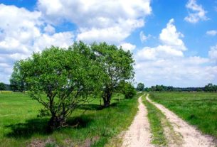 Agroturystyka - czy można mówić o boomie agroturystycznym w Polsce?